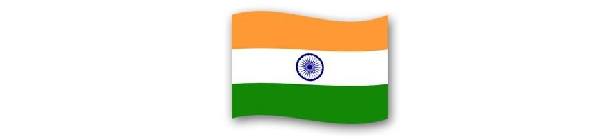 India 0 Euro Souvenir Banknotes